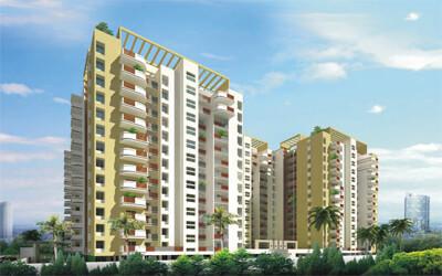 Olety Landmark Basaveshwara Nagar Bangalore