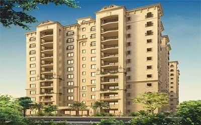 Legacy Saviero Horamavu Bangalore