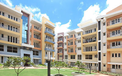 Embassy habitat   thumbnail