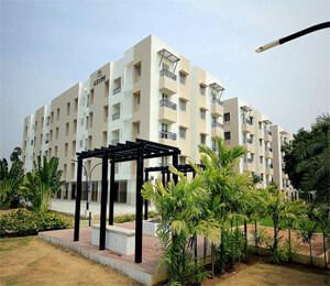 Asvini Amanya OMR Chennai