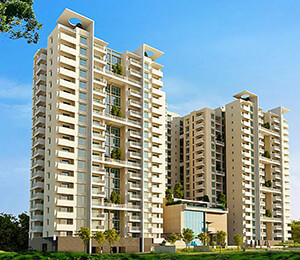 Ncc ivory heights