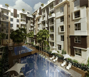 Jain group dream exotica smalltile