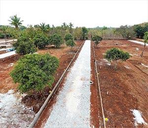 Samatha Paradise Plot Hunsur Road Mysore