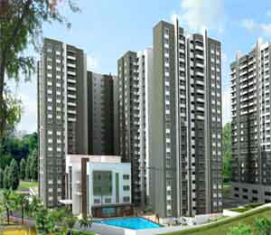 Sobha Forest View-Alder Off Kanakapura road Bangalore