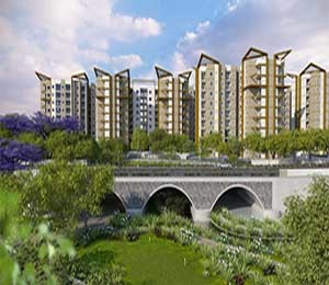Carnation at Brigade Meadows Kanakapura Road Bangalore