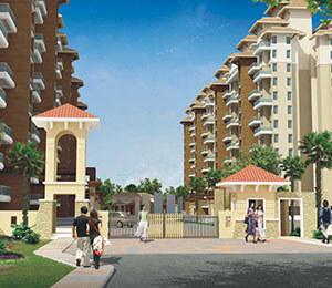 Alcon Silverleaf Mundhwa Pune