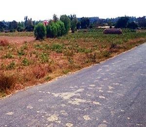 Krushi green meadows garden plot tile