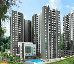 Sobha forest view tile