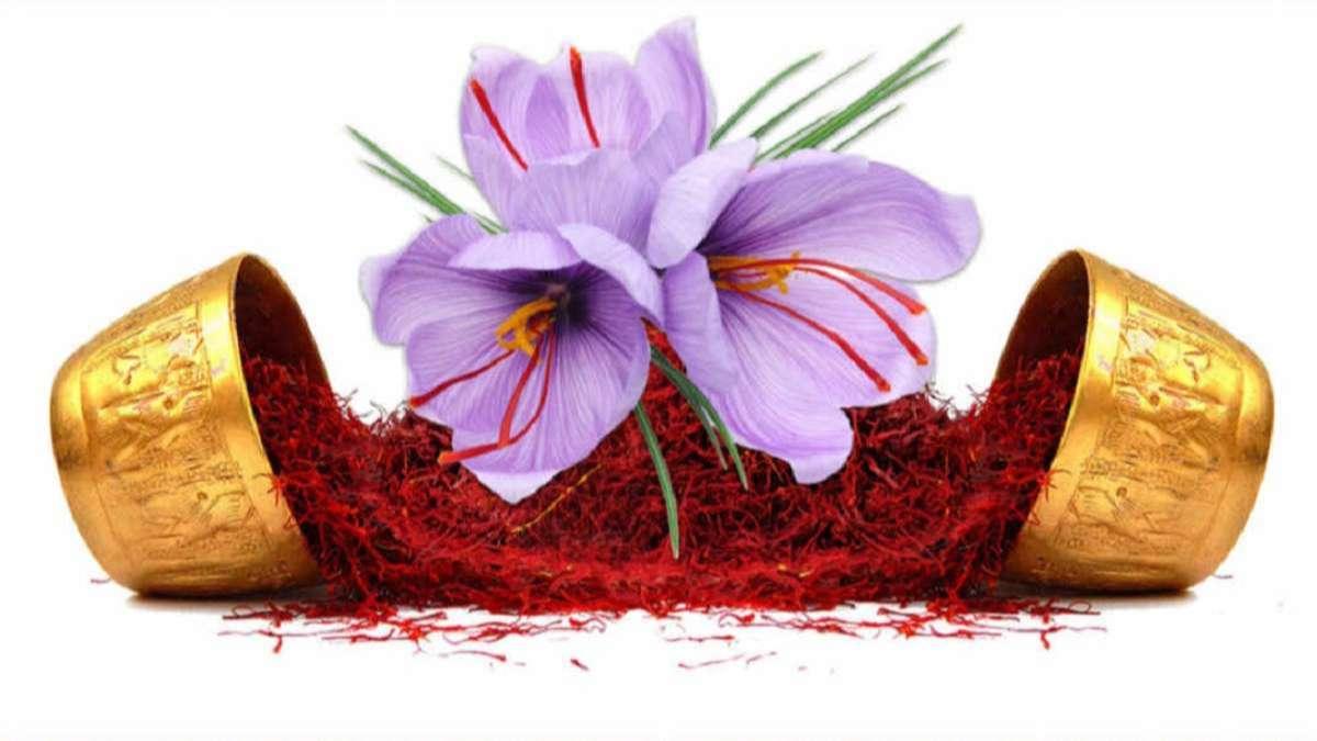 Nhụy hoa nghệ tây và những điều bạn chưa biết