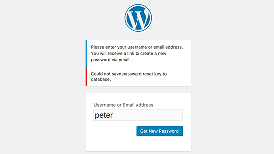 IDOLTV Một số lỗi thường gặp WordPress 38