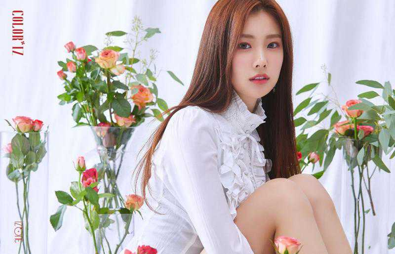 IDOL thông tin ca sĩ Hyewon IZ ONE kpop