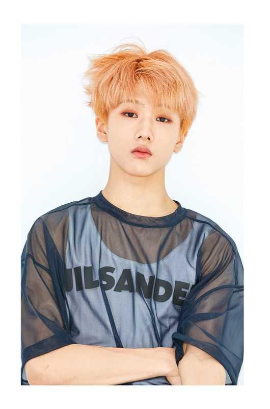 Idol thông tin thành viên jisung NCT Dream