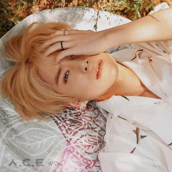 Idoltv Profile thông tin thành viên wow nhóm nhạc ACE k-pop