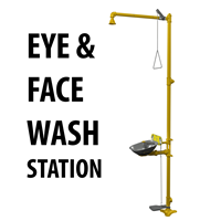 Picture for category Emergency Shower and Eyewash Station