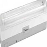 Jual LAMPU EMERGENCY Philips TWS 200 Deco Batten 2*TL-D14w new