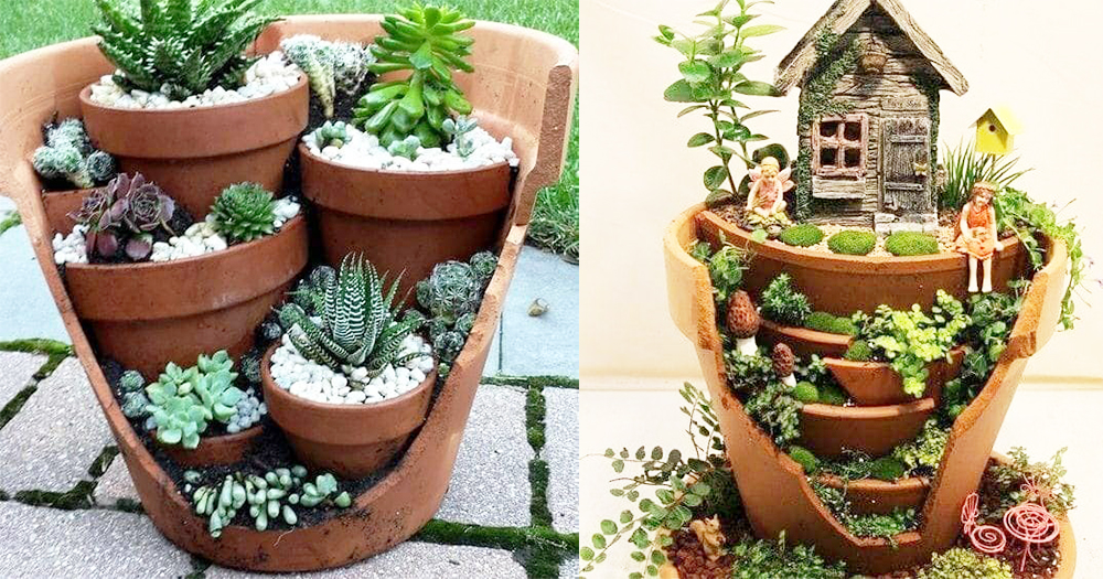 Someone Turned These Broken Pots Into A Beautiful Masterpiece! Terrariums Just Like Alice In The Wonderland~