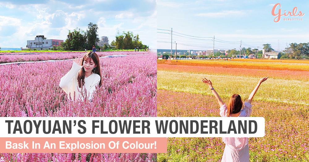 Pretty Flowers Galore And More At Taoyuan Flower Festival 2018
