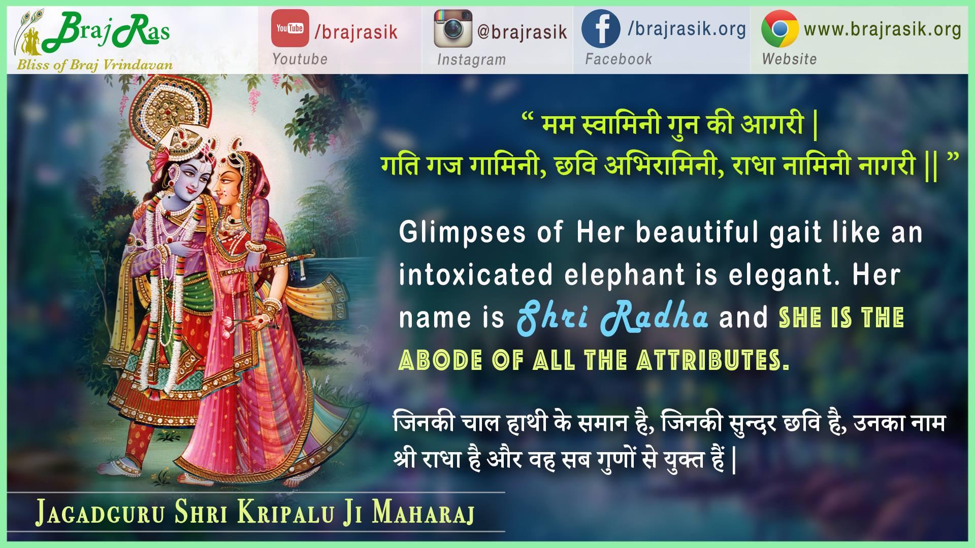 Mama swaamini guna ki aagaree - Jagadguru Shri Kripalu Ji Maharaj