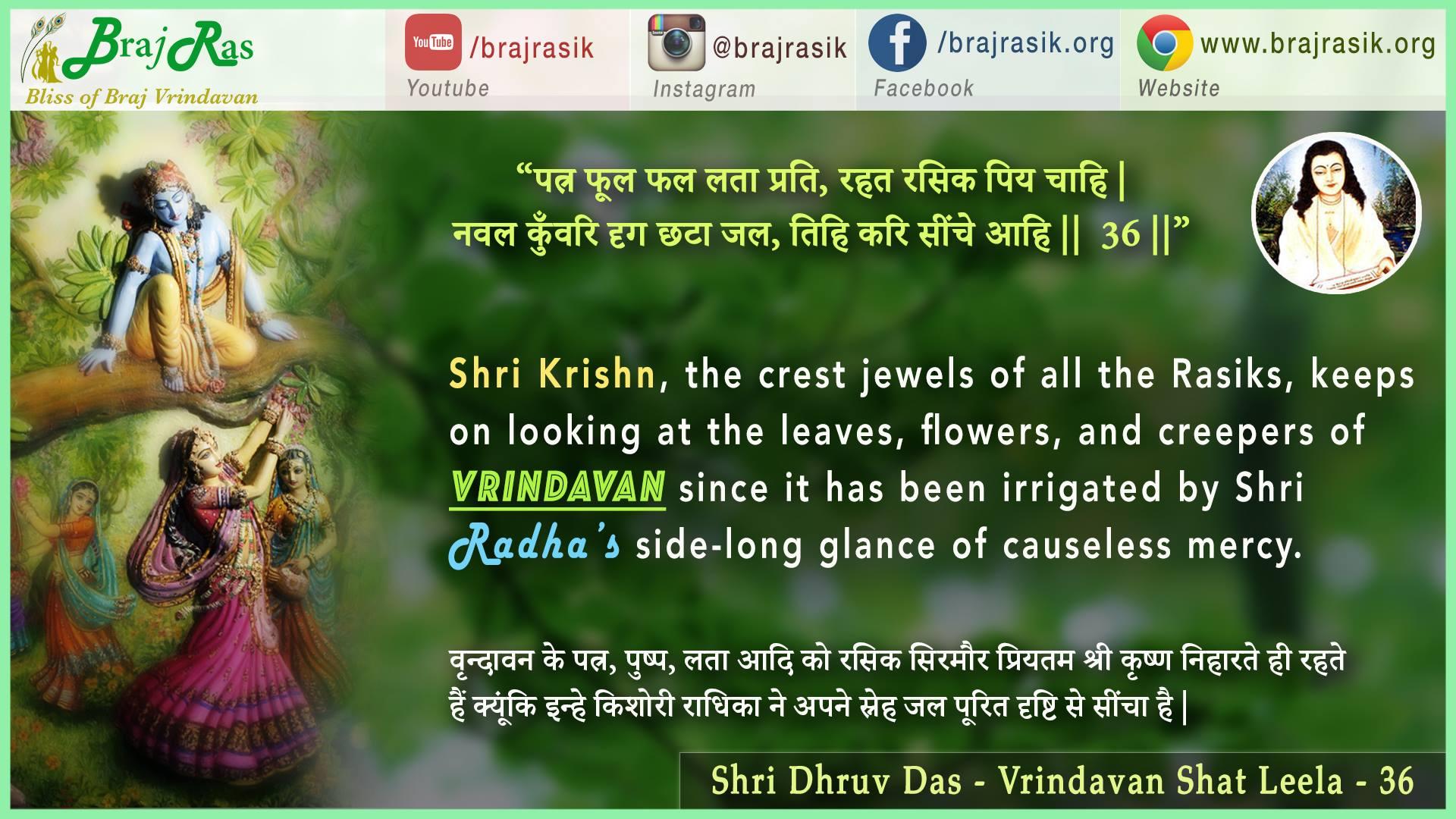 Patra Pushp Phal Lata Prati - Shri Dhruv Das - Vrindavan Shat Leela (36)