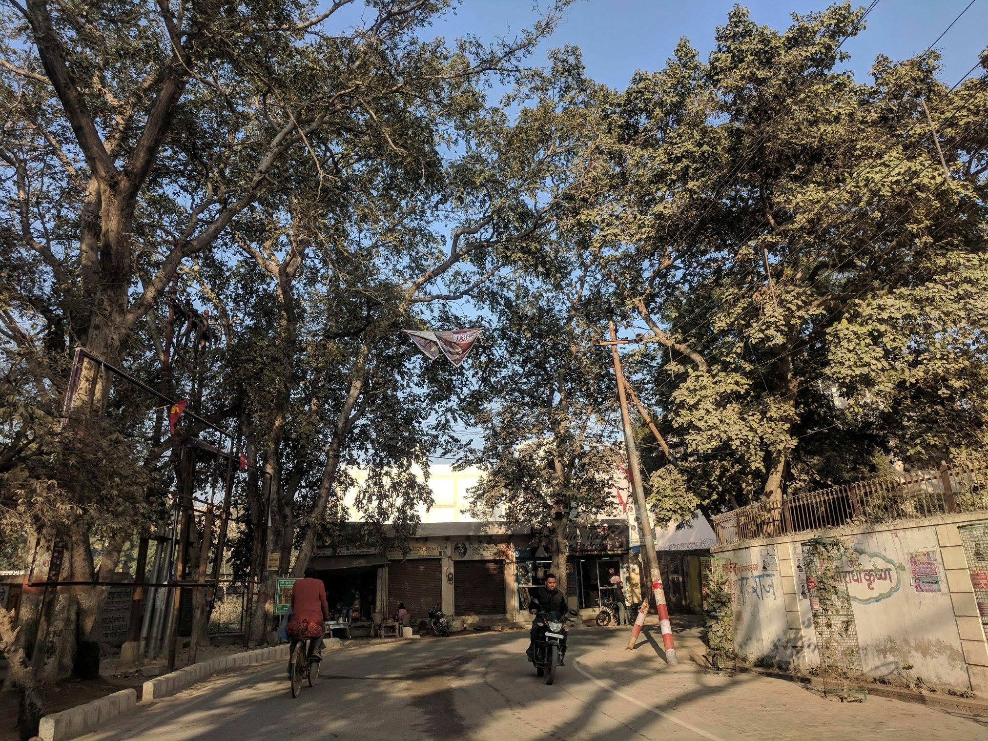 Parikrama Marg, Vrindavan