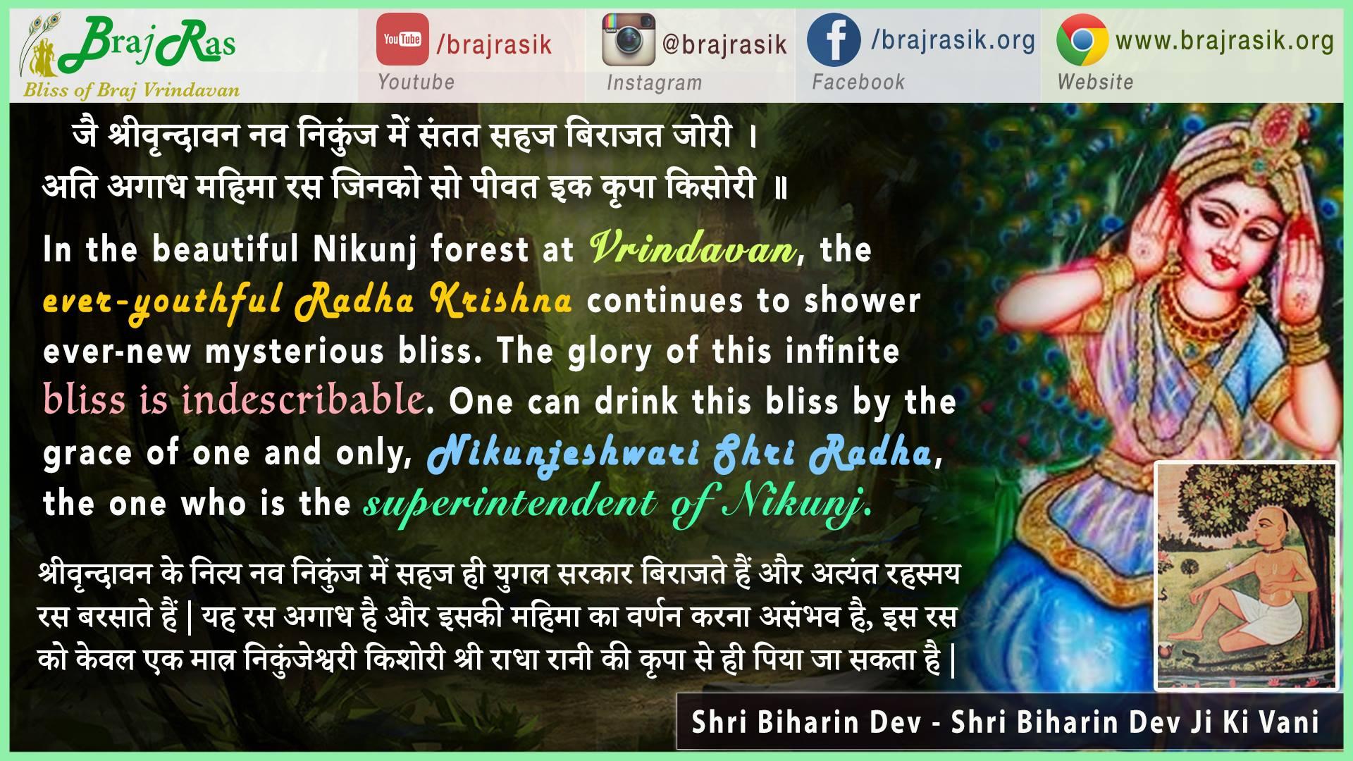 Jai Shri Vrindavan Nav Nikunj Mein Santat Birajat Jori - Quote by Shri Biharin Dev - Shri Biharin Dev Ji Ki Vani