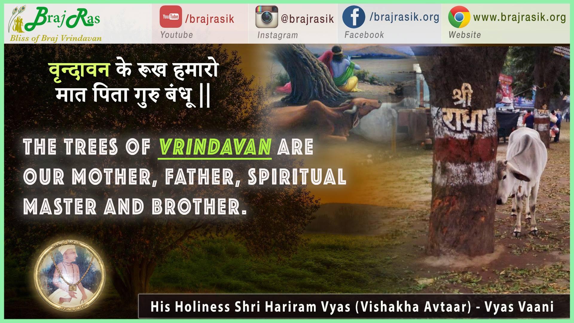 Vrindavan Ke Rookh Humaro Mat Pita Guru Bandhu - His Holiness Shri Hariram Vyas (Vishakha Avtaar) - Vyas Vani