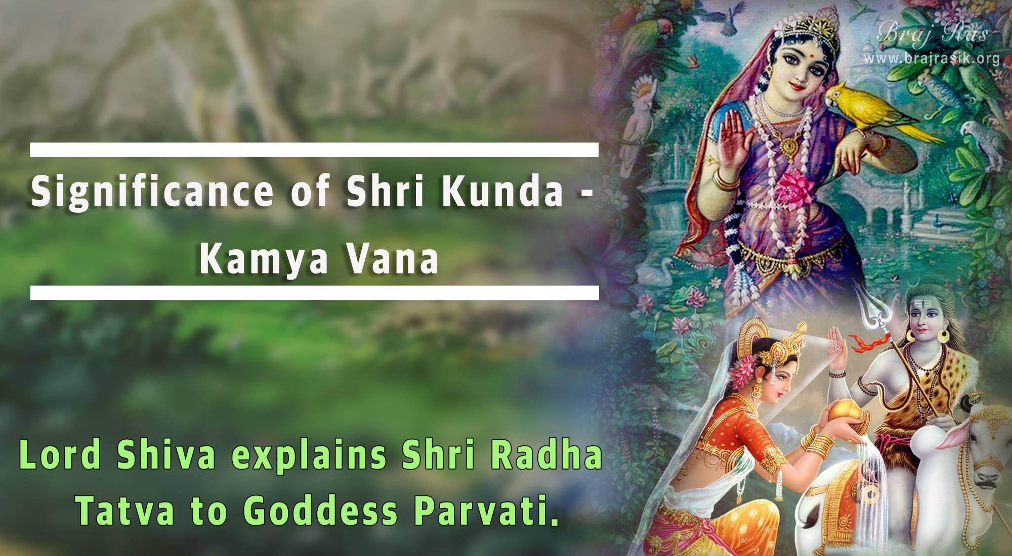 Significance of Shri Kunda - Kamya Vana