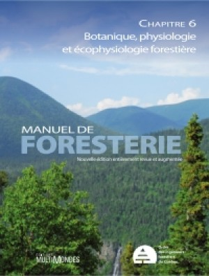 Manuel de foresterie, chapitre 06 – Botanique, physiologie et écophysique forestières by École Louis-J.-Robichaud Collectif from De Marque in Français category