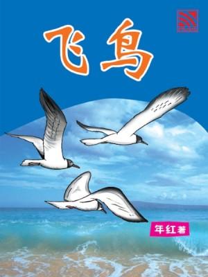 飞鸟 Fei Niao