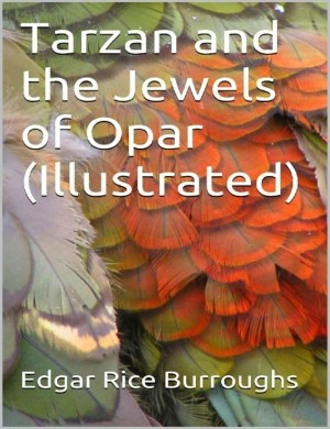 Tarzan and the Jewels of Opar (Illustrated) by Edgar Rice Burroughs from Michael Hamilton in Classics category