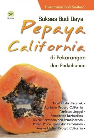 Sukses Budi Daya Pepaya California