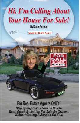 Hi, I'm Calling About Your House for Sale  by Elaine Annette from Bookbaby in Business & Management category