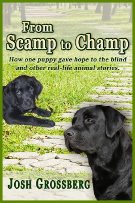 From Scamp to Champ How one puppy gave hope to the blind and other real-life animal stories by Josh Grossberg from Bookbaby in General Novel category