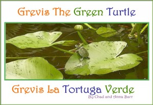 Grevis the Green Turtle Grevis la Tortuga Verde by Chad Barr from Bookbaby in Teen Novel category