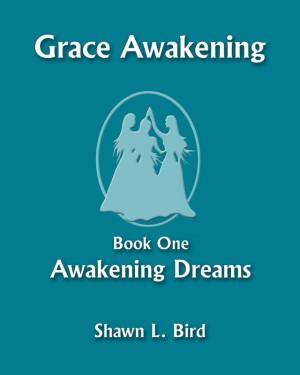 Grace Awakening Book One: Awakening Dreams by Shawn L. Bird from Bookbaby in General Novel category
