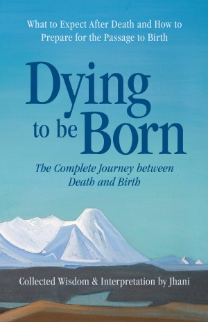 Dying to be Born - The Complete Journey Between Death and Birth by Jhani from Bookbaby in Religion category