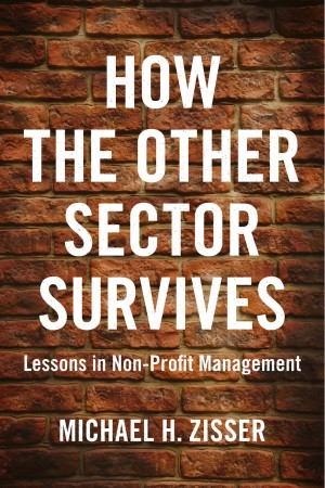 How The Other Sector Survives - Lessons in Non-Profit Management by Michael H. Zisser from Bookbaby in Finance & Investments category