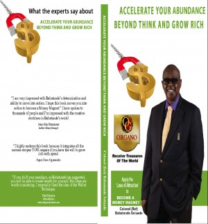 Accelerate Your Abundance Beyond 'Think and Grow Rich' - Become a Money Magnet by Babatunde Soluade from Bookbaby in Lifestyle category