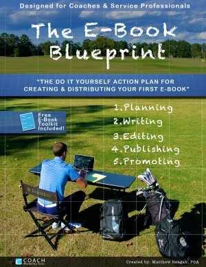 The E-Book Blueprint - The Do-It-Yourself Action Plan for Creating & Publishing Your First E-Book! by Matthew Reagan from Bookbaby in Finance & Investments category