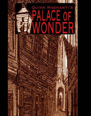 The Palace of Wonder  by Quinn Magnanti from Bookbaby in General Novel category