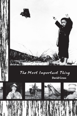 The Most Important Thing  by David Gross from Bookbaby in General Novel category