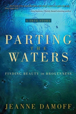 Parting the Waters Finding Beauty in Brokenness by Jeanne Damoff from Bookbaby in Autobiography & Biography category