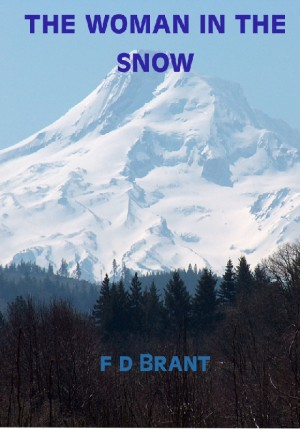 The Woman in the Snow  by F D Brant from Bookbaby in General Novel category