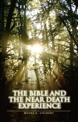 The Bible and the Near-Death Experience by Moses U. Colbert from  in  category