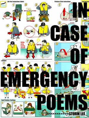 In Case Of Emergency  by Storm Lee from Bookbaby in General Novel category
