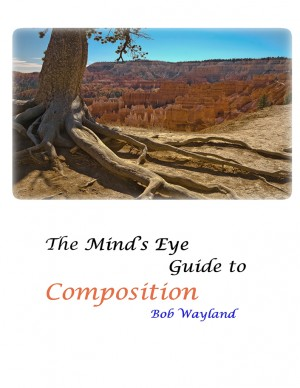 The Mind's Eye Guide to Composition: Book One Psychology of Composition or Painless Photographic Compositions by Bob Wayland from  in  category