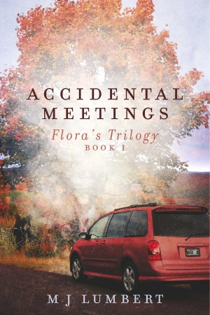 Accidental Meetings Flora's Trilogy  Book 1 by M J  Lumbert from Bookbaby in Romance category