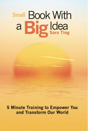 Small Book with a Big Idea 5 Minute Training to Empower You and Transform the World by Sara Ting from Bookbaby in Lifestyle category