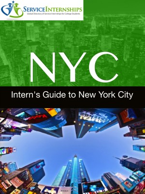 Intern's Guide to New York City by Emma Penrod from Bookbaby in Travel category