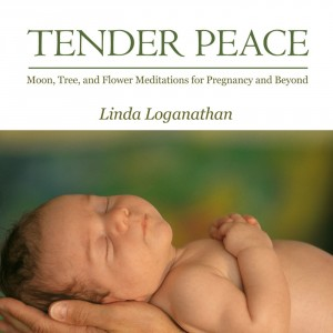 TENDER PEACE - Moon, Tree and Flower Meditations for Pregnancy and Beyond by Linda Loganathan from Bookbaby in Religion category